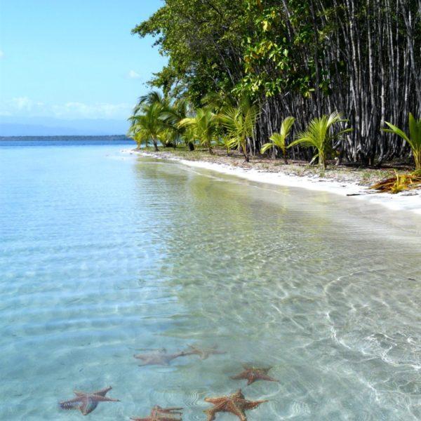 Catamaran en el Caribe - San Blas (Panama)